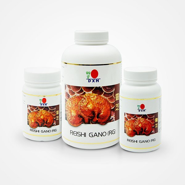 reishi-gano-group